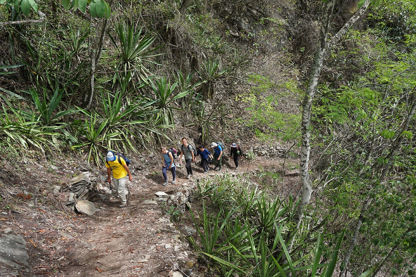 Hiken - Inca Jungle Trail - reizen in Peru